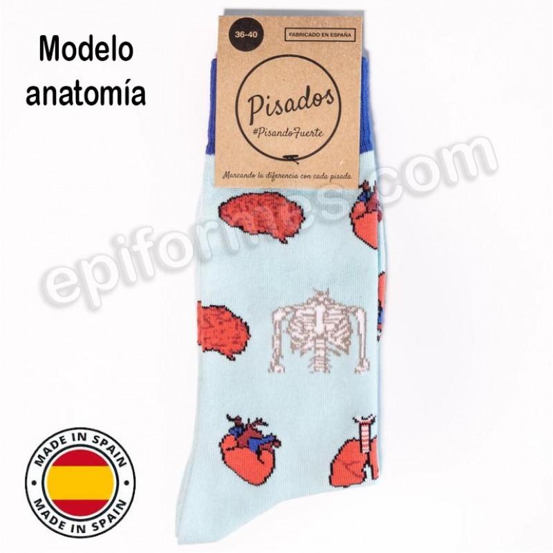 Calcetines de sanidad estampados anatomía